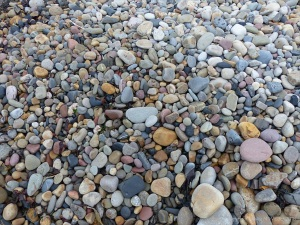 Pebbles at Langland Bay