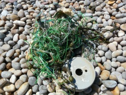 Green fishing rope and reel washed up on a pebble beach