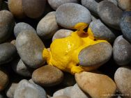 Yellow paint spilt on a pebble beach