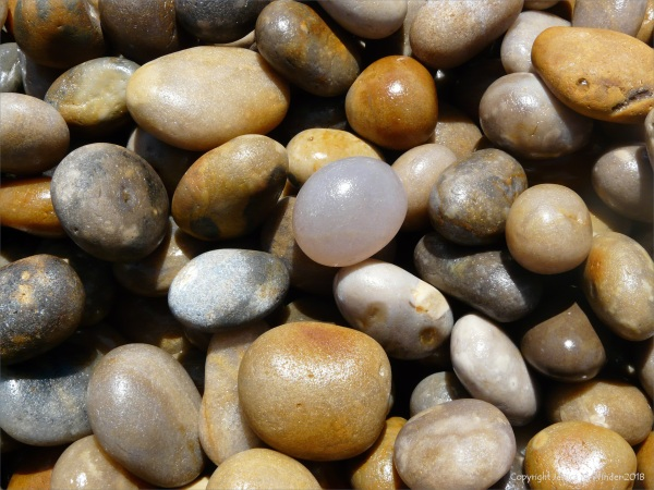 Pebbles on Chesil Beach