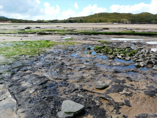 View looking upshore over eroding ancient peat and clay beds at Broughton Bay