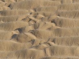 Natural patterns in beach sand