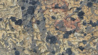 Detail of natural pattern in flagstone in Orkney
