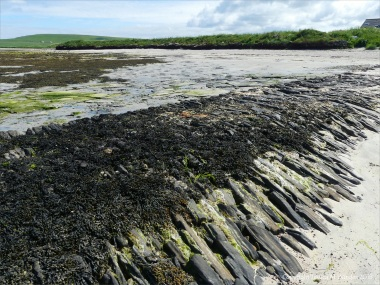 West slopingface of old stonework pier at Grit Ness in Orkney