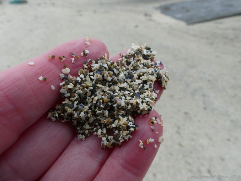 Shelly sand from the beach at Birsay