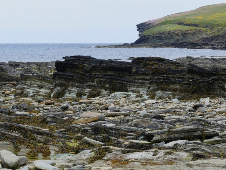 Rock strata on the beach at birsay