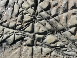 Natural pattern of cracks and crevices in a rock platform