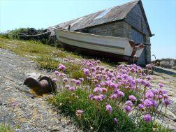 Chapmans Pool 10 Boathouse