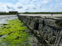 Looking up-shore at the vertical east face of old stonework pier at Grit Ness in Orkney