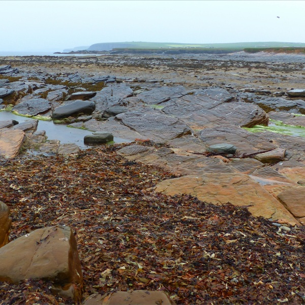 View looking northeast across the causeway at Birsay in Orkney