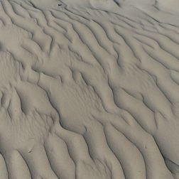 Ripple pattern made by the wind in dry sand