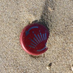 Red bottle cap in sand