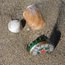 Beer bottle cap and seashells on the beach