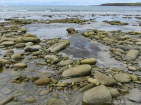 Peat beneath boulders on the beach