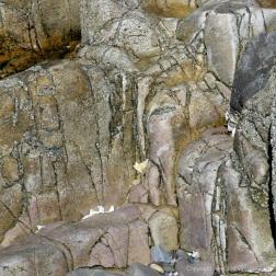 Natural pattern in rocks