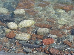 Underwater boulders by a sea wall