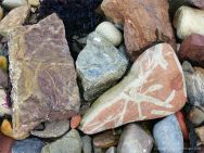 Natural patterns in beach stones at Newark Bay