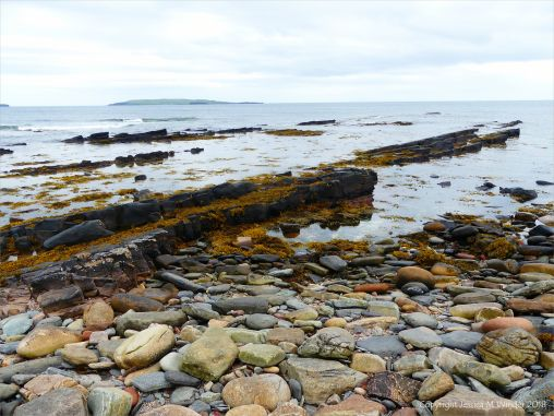 Rock outcrops and seaweed