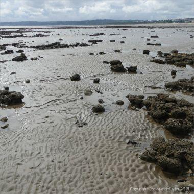 Ripple patterns on the seashore