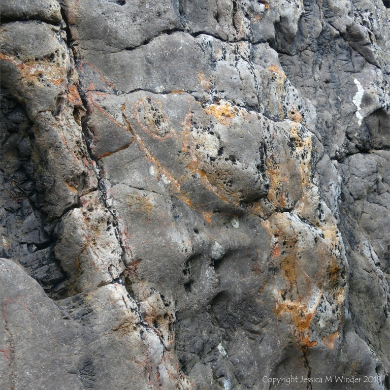 Detail of water-worn Carboniferous limestone