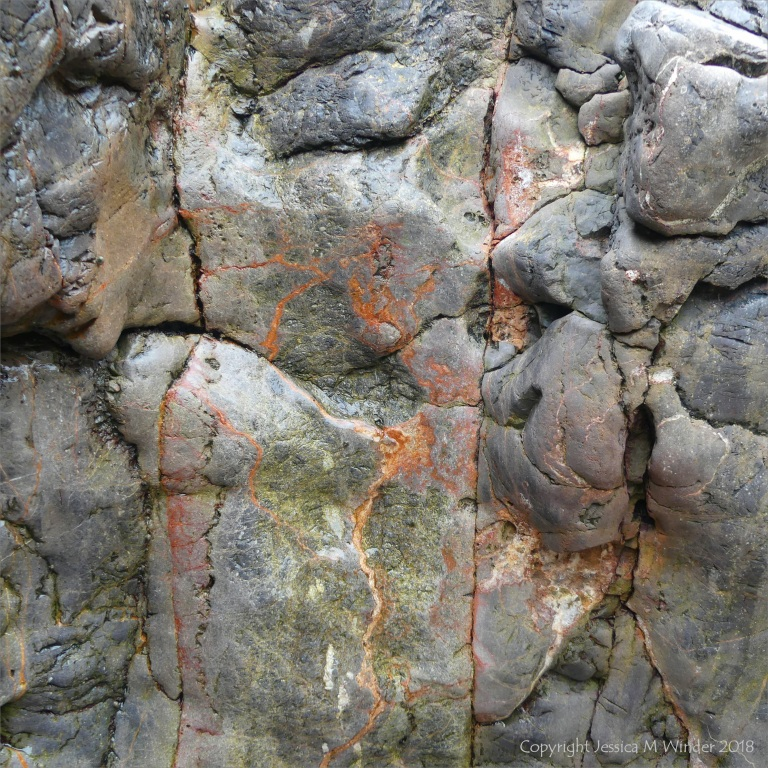 Texture and colour of limestone rock seashore outcrop