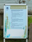 Notice about seaweed on the beach