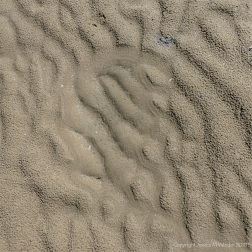 Sand texture and pattern on the beach