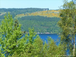 View of Loch Ness from the Farigaig Forest