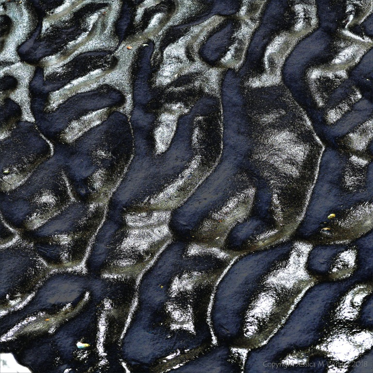 Wet sand ripples