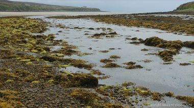 Mill Burn flowing out across Waulkmill Bay in West Mainland, Orkney.