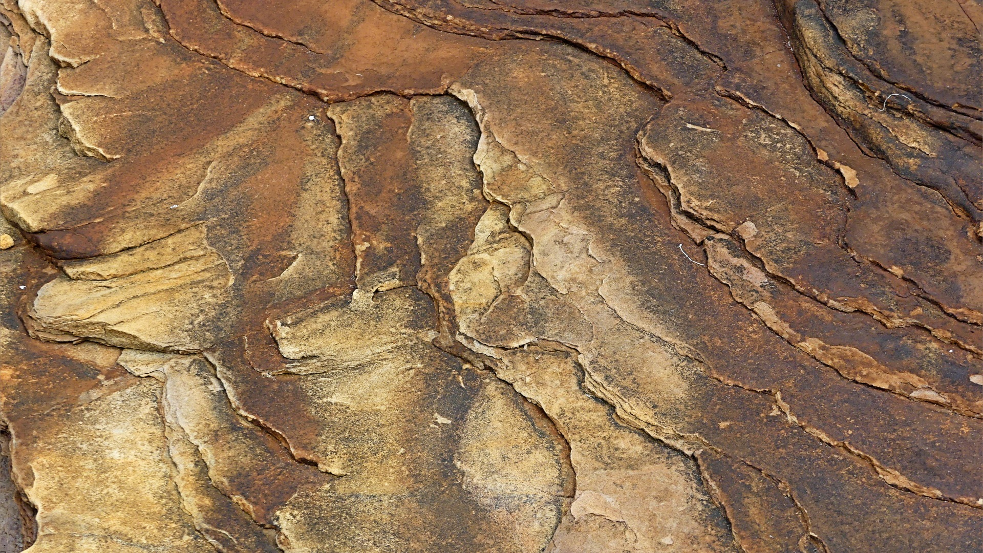 Water-worn sedimentary rock strata on the seashore