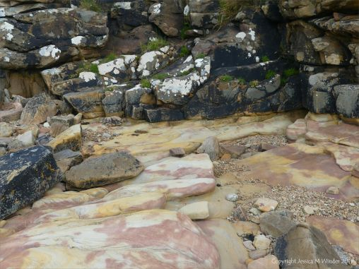 Pink, yellow, and buff Eday Group sedimentary rock on Orkney