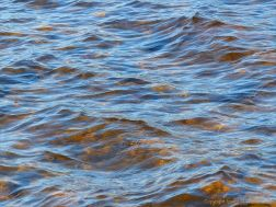 Water colour, pattern, and texture on the edge of Loch Ness