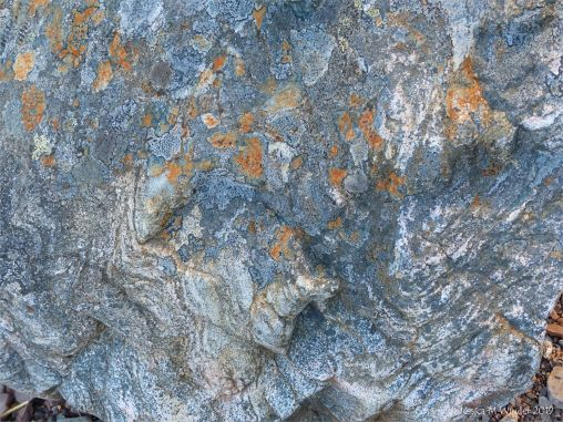 Detail of a boulder on the bank of Loch Ness