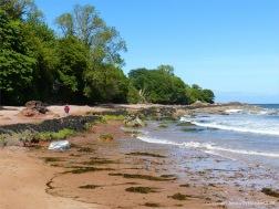 Aspects of Nature on a Scottish seashore