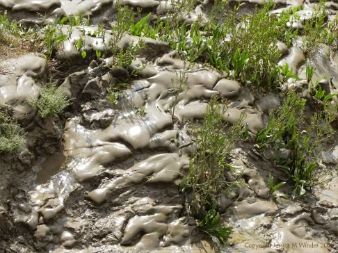 Tidal river mud shapes and textures