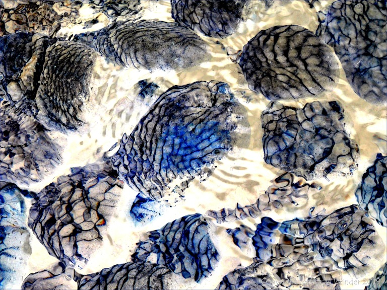 Part of a study of nNatural patterns of reflected light on river-bed pebbles