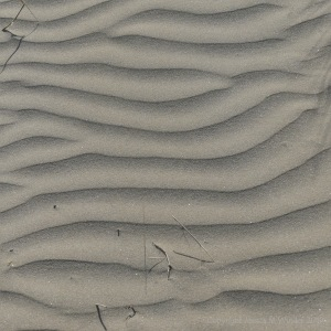 Natural patterns in wind-blown dry sand