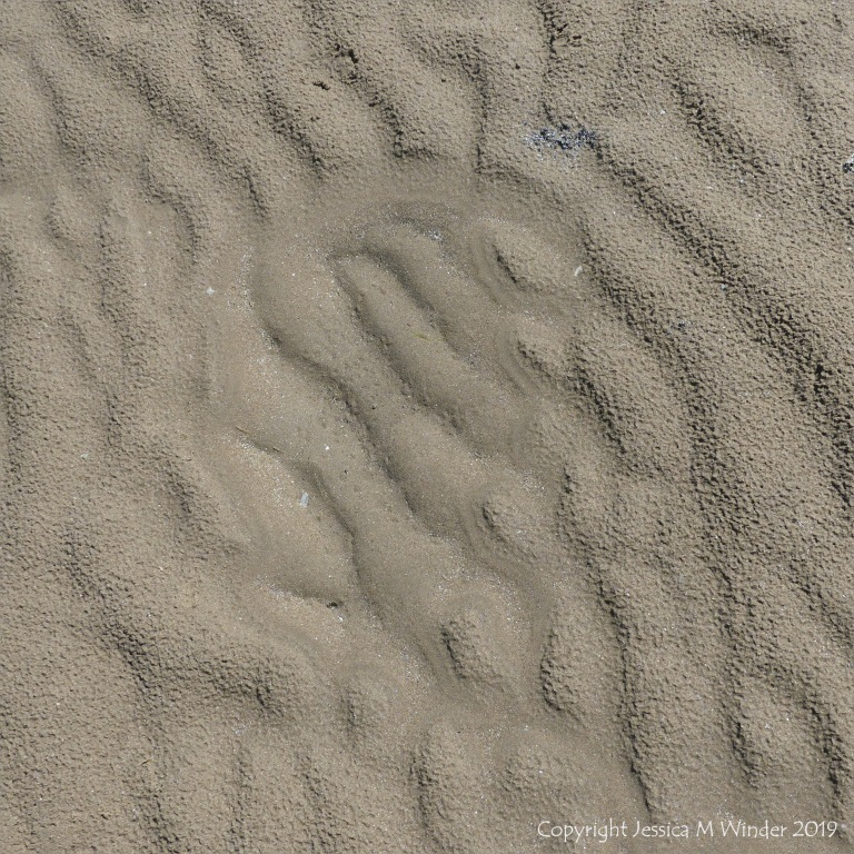 Natural sand patterns left by the ebbing tide