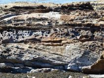 Upper Old Red Devonian Sandstone at Portmahomack