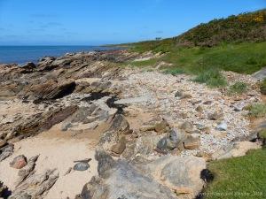 Upper Old Red Devonian Sandstone at Portmahomack