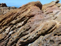 Sedimentary Upper Old Red Devonian Sandstone at Portmahomack