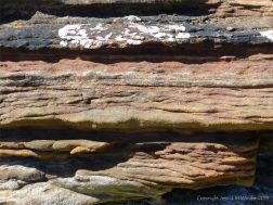 Sedimentary Upper Old Red Devonian Sandstone at Portmahomack