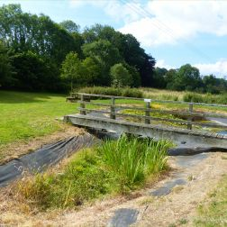 Village pond drying up in summer