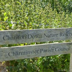 Local nature reserve sign