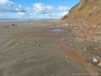 Orange mud on Rhossili beach