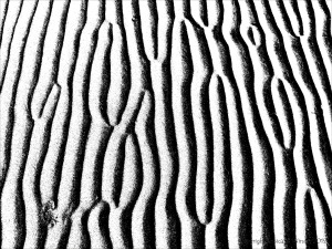 Monochrome ripples across the beach at Whiteford Sands