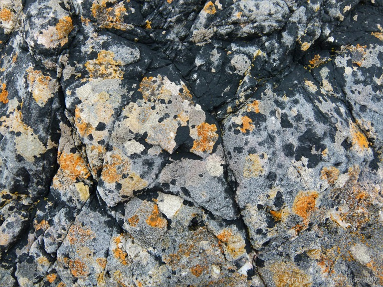 Natural pattern of lichens on limestone rock