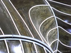Detail of sculpture made of kelp