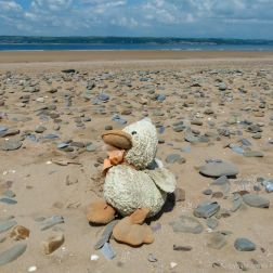 Flotsam on a UK beach